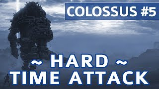 Shadow of the Colossus (PS4) - Colossus #5 Avion Boss Fight - Hard Time Attack