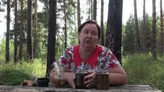 СОСНОВЫЕ ШИШКИ на СПИРТУ || Рецепт приготовления
