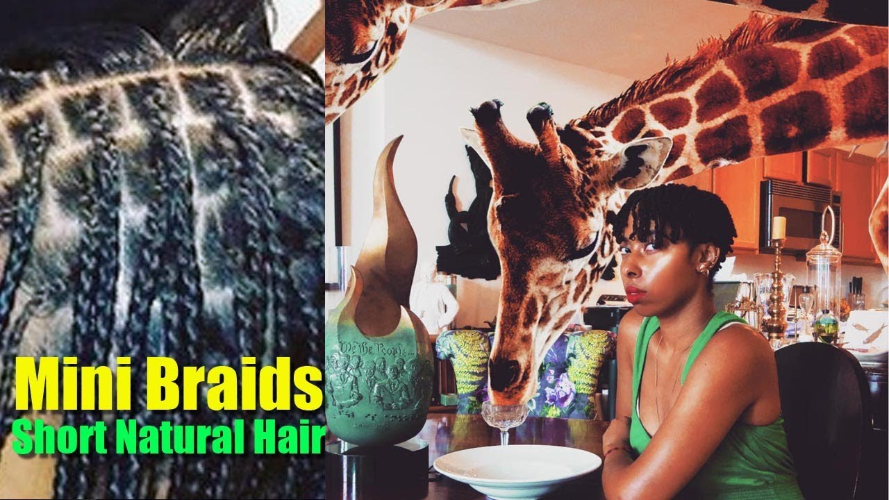 Mini Braids On A Twa Short Natural Hair Protective Style Youtube