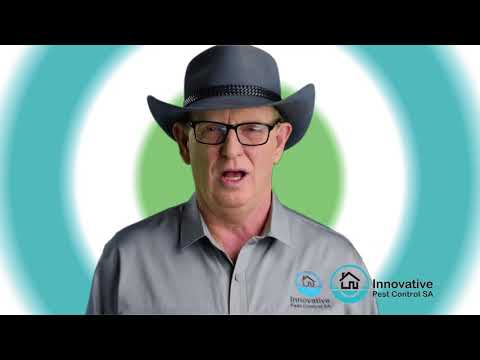Pest Control Adelaide TV Commercial