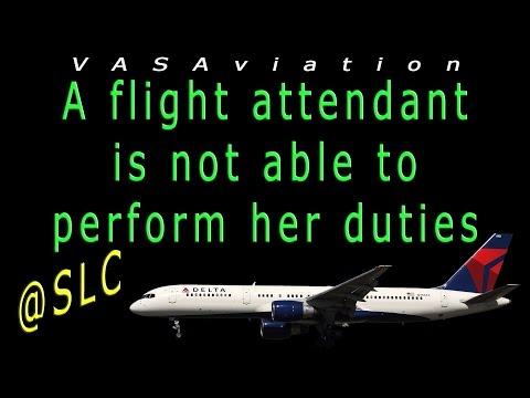 [RARE ATC] Delta Flight Attendants FIGHTING on board!! :O