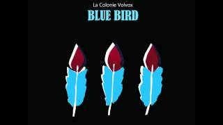 La Colonie Volvox - Blue Bird (Full Album) EGoEast records 2015