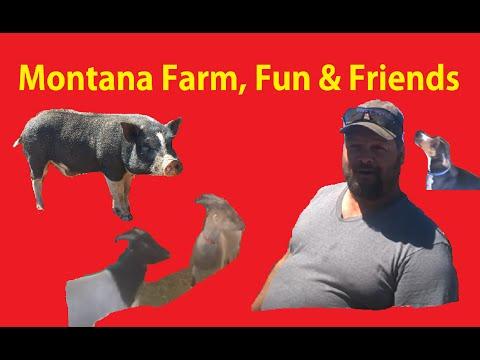 New Help ~ Montana Lot Walkaround Cars, Land, Critters, WE B Redneck Friends