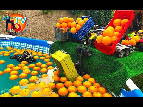 Learn Colors TRAKTOR BRUDER Truck with Baby ORANGE Pool for Children  | Kids Videos