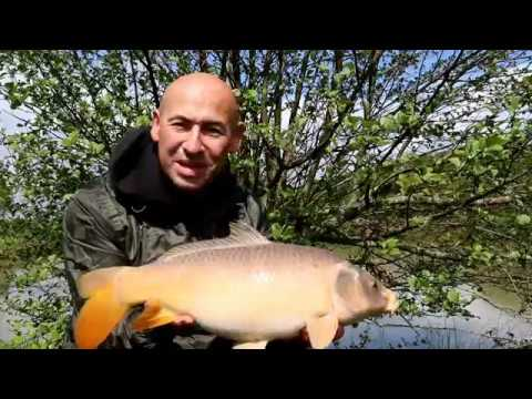 Episode 2: Bank Time - Jay Taylor Carp Fishing Blog - Dairy House Farm Dorset