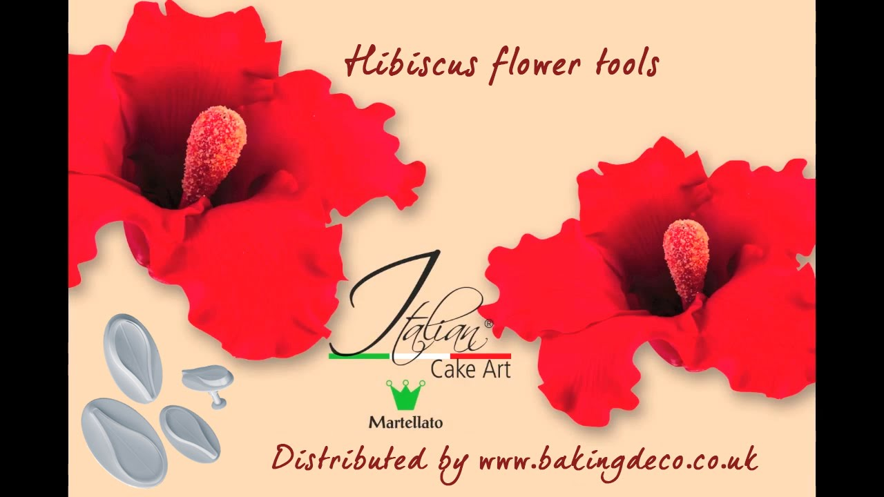 Baking deco hibiscus flowers former and cutters youtube baking deco hibiscus flowers former and cutters izmirmasajfo