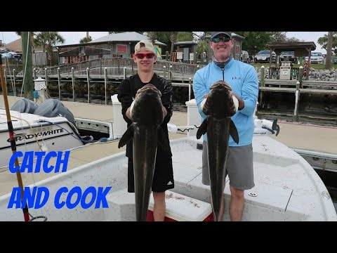 Catch And Cook Cobia | Epic Day Fishing