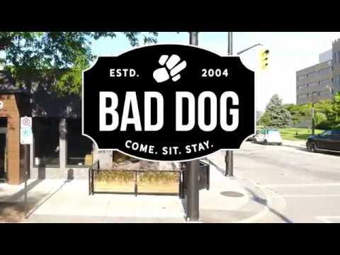 Bad Dog Sarnia