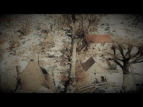 Ubistvo porodice Zvicer