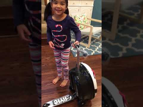 Zinc Flyte Kids Luggage Scooter Polly The Panda Luggage