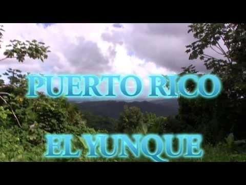 Puerto Rico, El Yunque, Yokahu Observation Tower