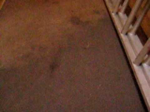 Roof leak Fairmount Quarters 3.13.2010 upstairs hallway