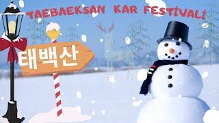 태백산 눈 축제
