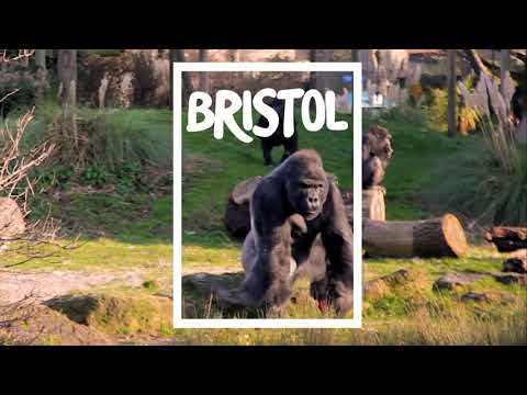 Visit Bristol: Guide to 2019