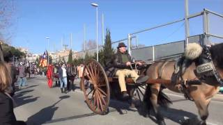 Badalona viu la 139 edició de la Passada de Sant Antoni Abat
