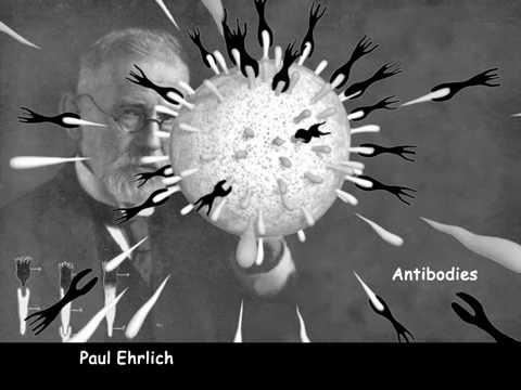 Die Aktivierung des Immunsystems (Michael Reth)
