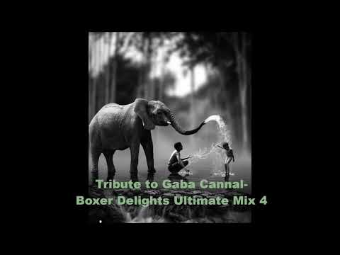 Boxer Delights -Tribute to Gaba Cannal