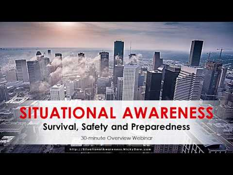 Situational Awareness Webinar [1-hour] | Nicky Dare with Guest: David Gray