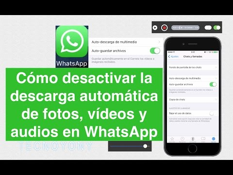 Como desactivar la descarga automatica de fotos, videos y audios en WhatsApp iPhone