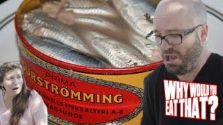 Surströmming! You Asked, We Delivered - Why Would You Eat That?