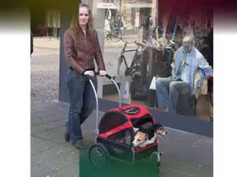 DoggyRide Mini Stroller