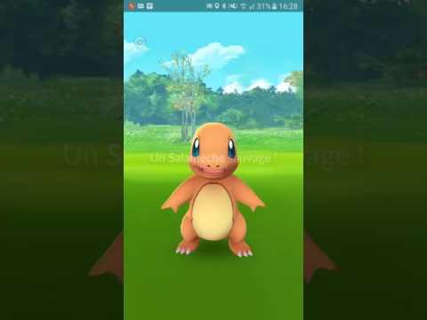 Pokemon Go - Chasse aux Salamèche du Jardin des plantes
