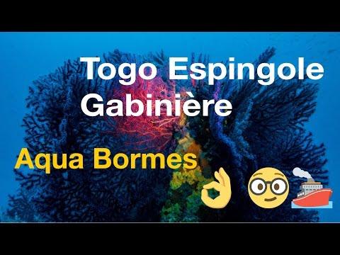 Aqua Bormes Togo, Espingole, Gabinière