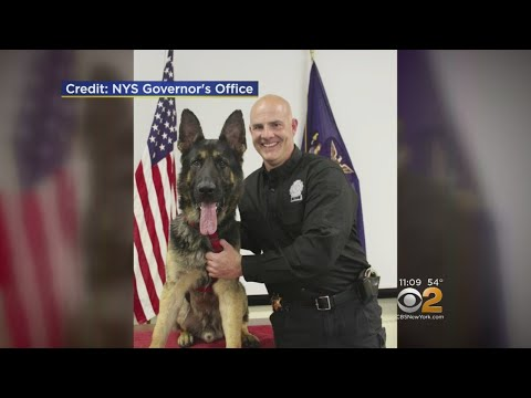 Rockland County Sheriff's K9 Kills Family Pet