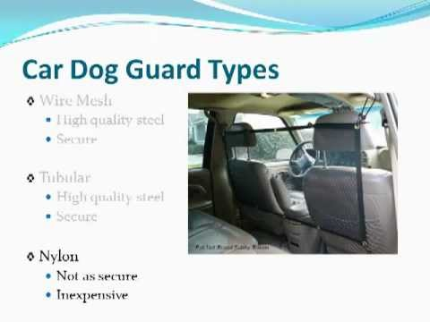 Dog Guards For Cars Keeping Your Pet Dog Safe With A Car Dog Guard
