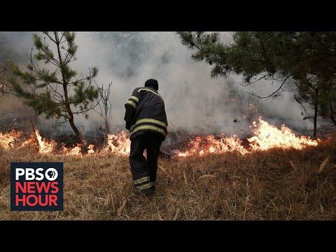 News Wrap: Ukraine wildfires cause surge in air pollution near Kiev
