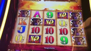 Buffalo Gold #15headclub #handpayalert #hugejackpot