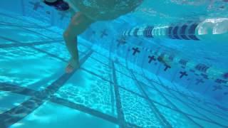Swim-run With Tommy And Katie Zaferes