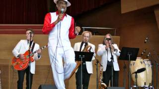 Andre Williams & the Goldstars - Fight for your rights