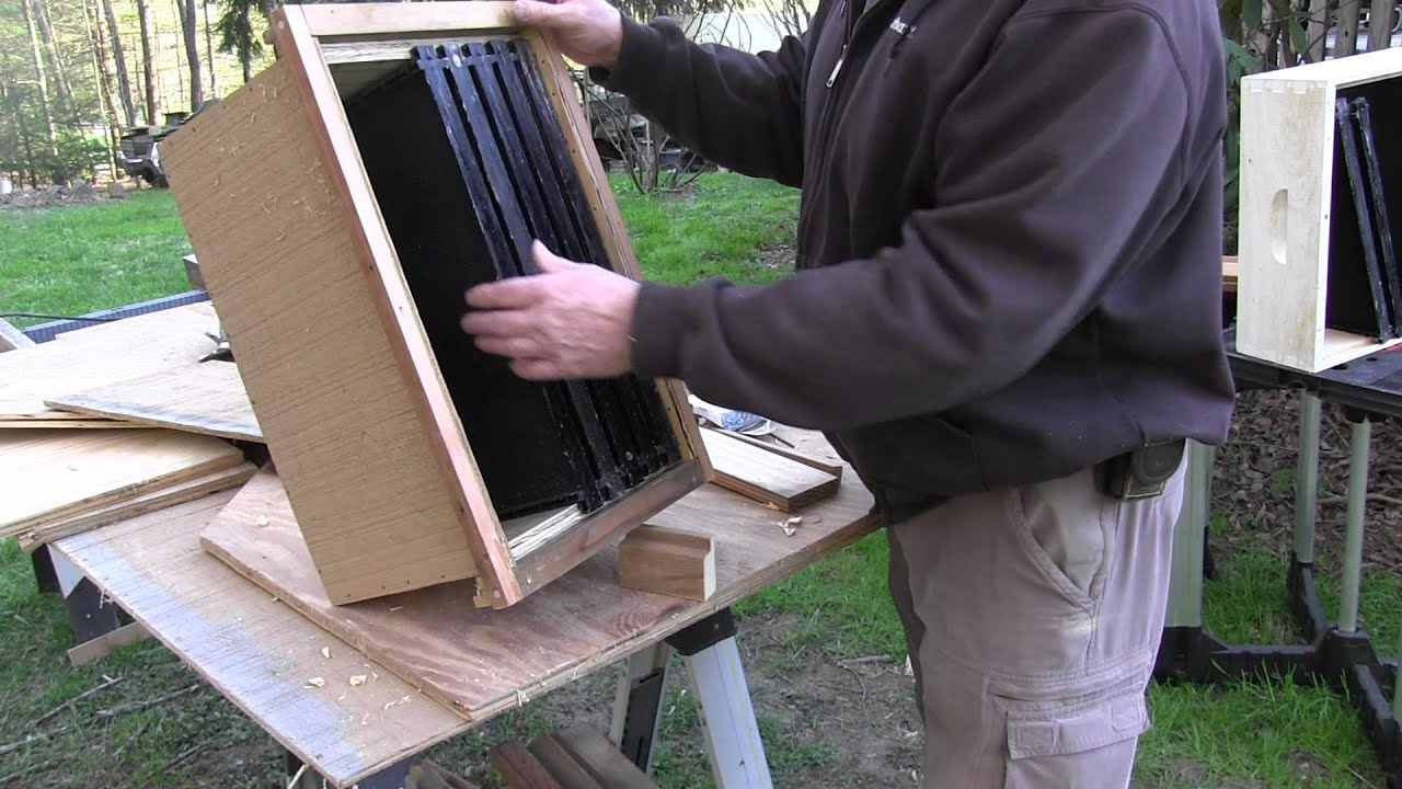DIY Honey Bee Swarm Bait Hive Trap Part 1