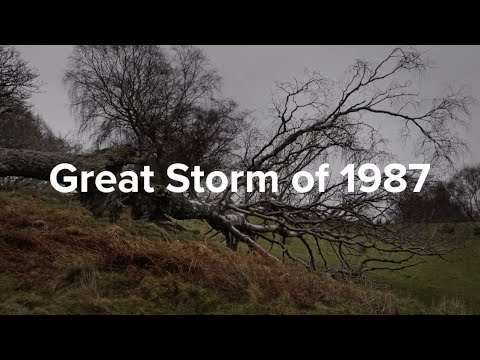 Image result for 1987 great storm