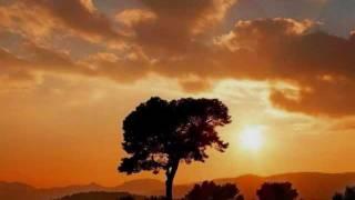 Solitude Aeturnus - Concern