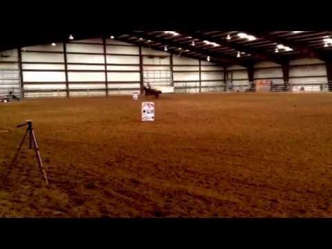 Ducati Dash (Boogie) & Terese Dorsett Blommaert Amarillo, TX 12/15/14 15.6