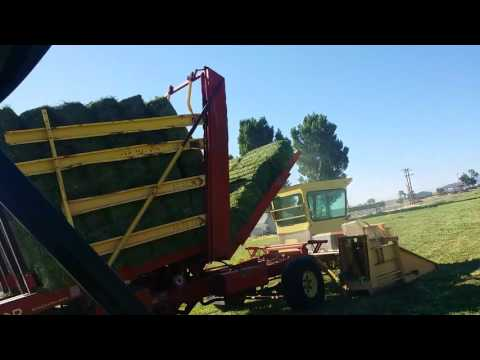 New Holland Harrow Bed Bale Wagon For Sale