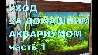 Аквариум для начинающих. Уход за домашним аквариумом. Часть 1(Как ухаживать за домашним аквариумом. Аквариум для начинающих аквариумистов. В данном выпуске рассмотрим..., 2014-05-03T06:54:22.000Z)