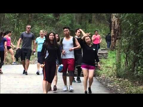 Dandenong Ranges National Park Hiking