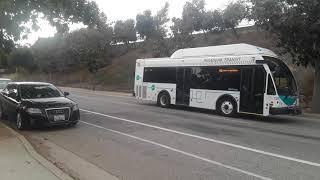 Pasadena Transit 2014 ElDorado National E-Z Rider II BRT CNG 32' #3292