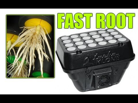BEST Cloning Device for Hydroponics and Growing Plants Cuttings