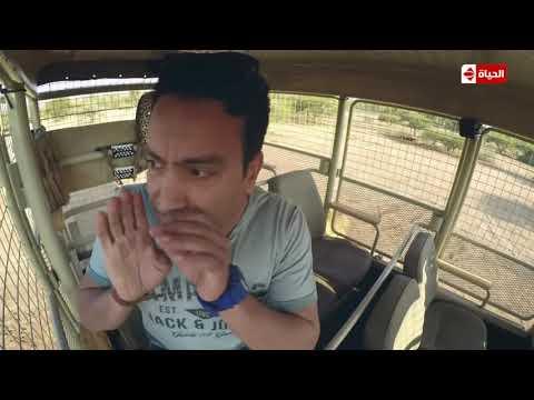ذعر 'سامح حسن' لحظة هجوم الاسد الكبير على سيارته ... الحلقة 16