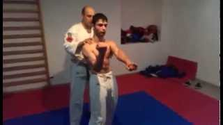 SHOTOKAN ARMAVIR The Short version of SANCHIN kata
