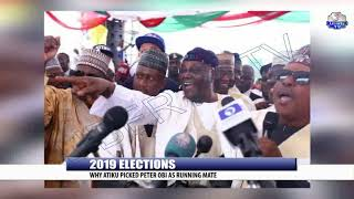 2019 Elections: Why Atiku Picked Peter Obi As Running Mate