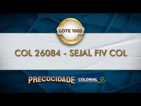 LOTE 1002   COL 26084