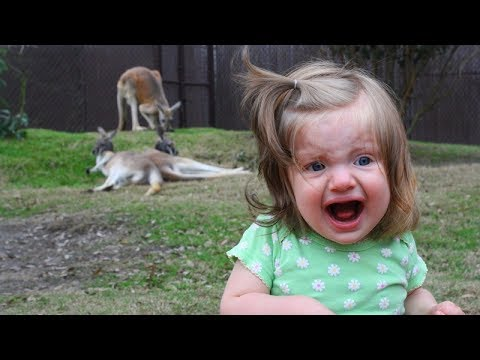 Image of: Images baby kid toddler Guff The Best Of Funny Kids Babies Super Hard Try Not To Laugh