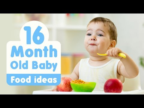 food-ideas-for-16-month-old-baby
