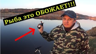 4 УЛОВИСТЫХ АРОМАТА для Весенней Рыбалки. Ловля на фидер. Рыбалка на фидер весной 2021.
