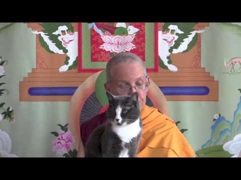 Meditation and review on equanimity